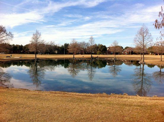Reflection on pond